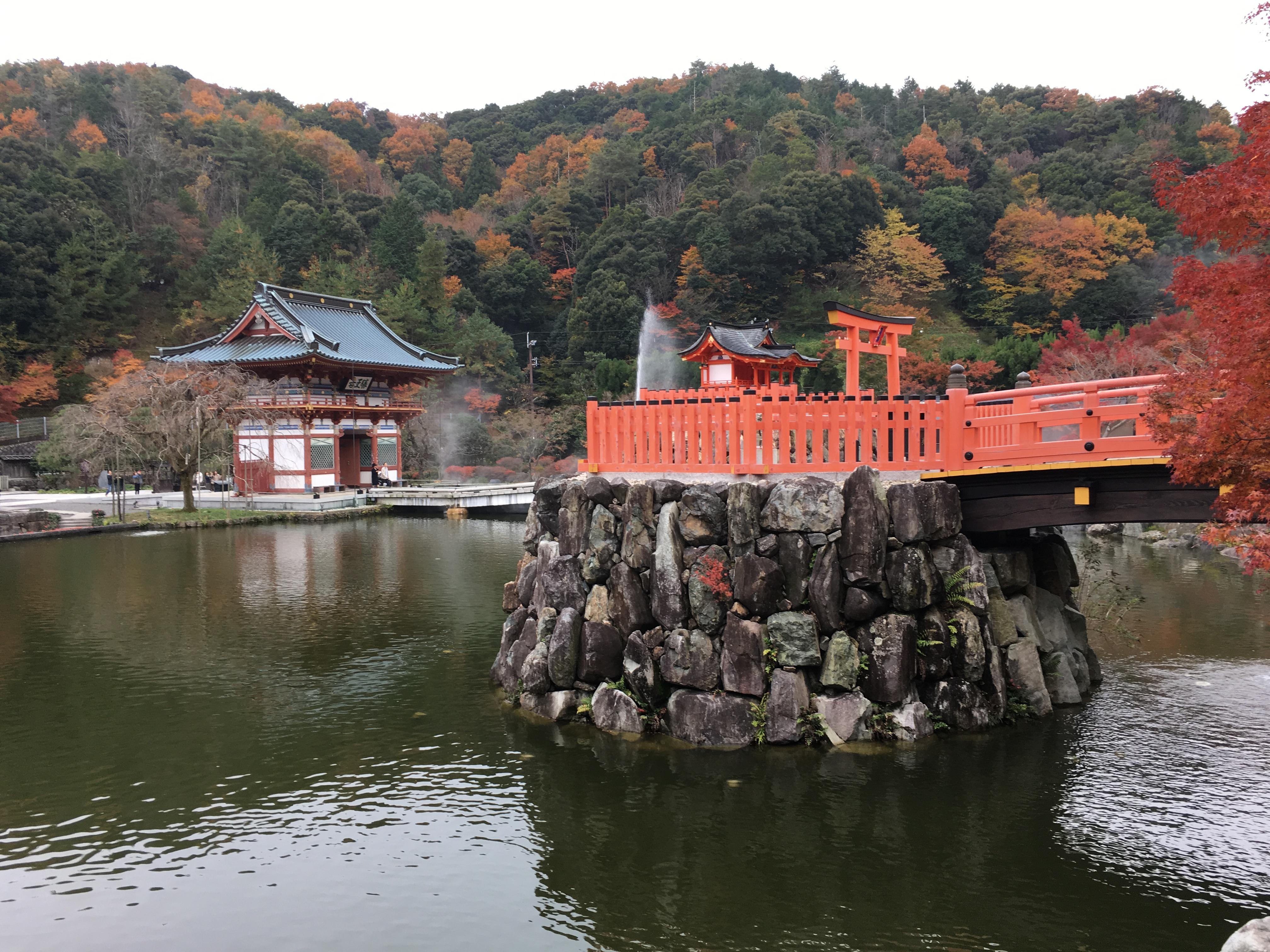 大阪の紅葉